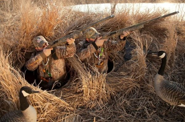Popup Duck Blind